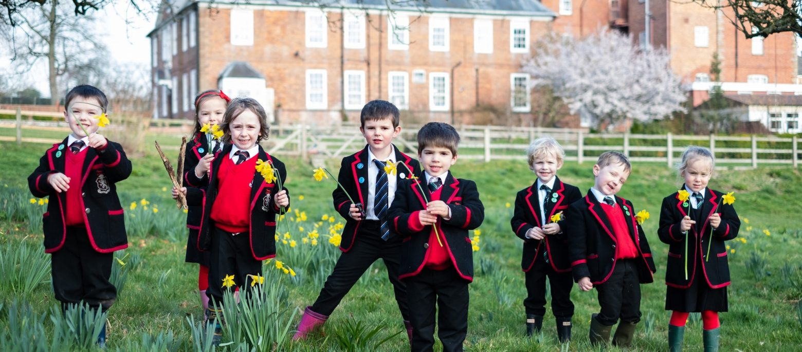 Lucton School pupils picking daffodils